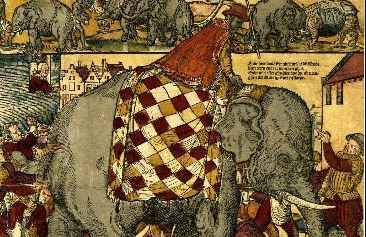 Olifant Emanuel en zijn verzorger (1563)